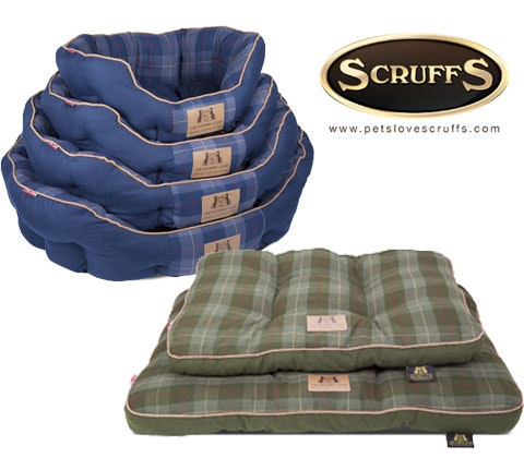 Win 3 x Scruffs Kennel Club mattress & donut bed sweepstakes