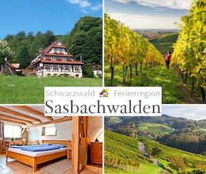 2015 kw40 sasbachwalden  tvm
