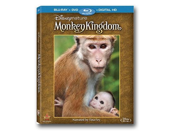 Monkey kingdom 560x420