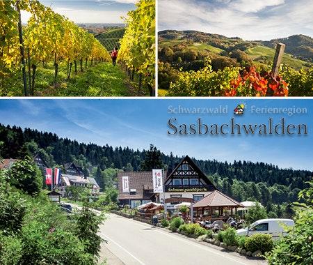 2015 kw48 sasbachwalden  l