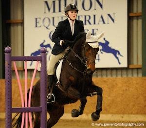 Milton 388 winit