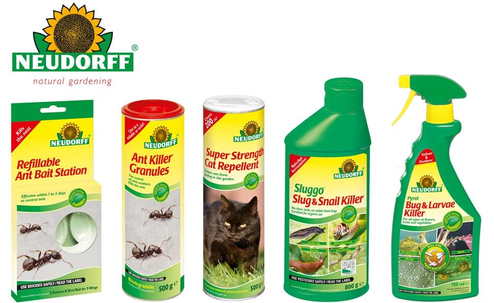 Pest control flat