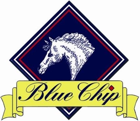 Blue chip logo