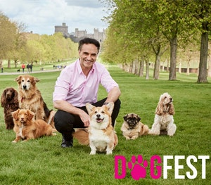 Dogfest in windsor comeptition