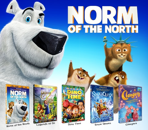 Norm bundle image 3
