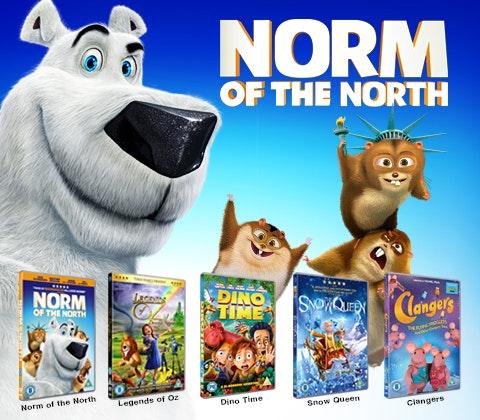 Norm bundle image 3