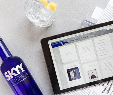 Skyy eine generation weiter journal 450x380px