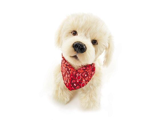 Georgie puppy animaltales prize