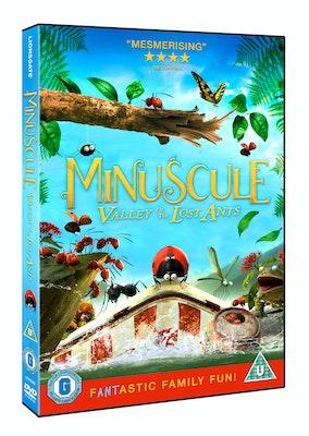 Miniscule 3d dvd  002  competition