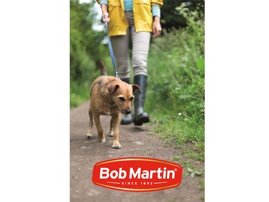 Bob martin competition