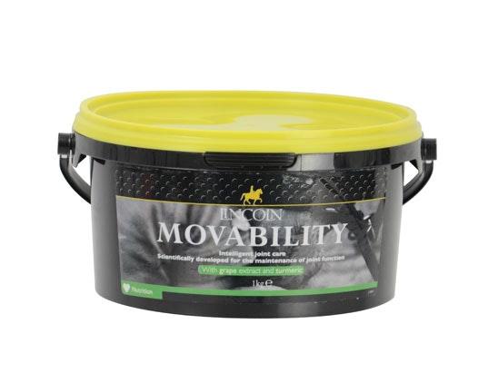 Lincoln movibility