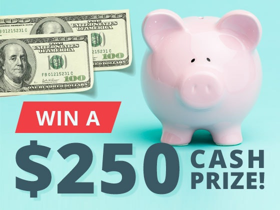 $250 Cash Prize February 2017 sweepstakes