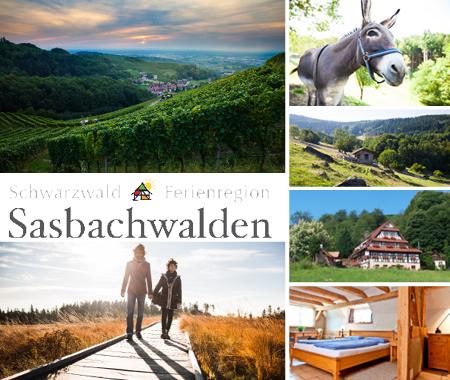 2017 kw12 sasbachwalden  c