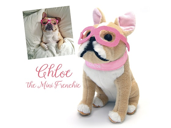 Petsies Stars Chloe and Hamlet sweepstakes