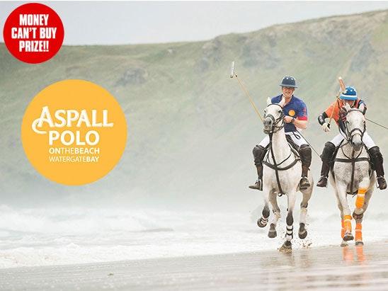 Aspall Polo sweepstakes