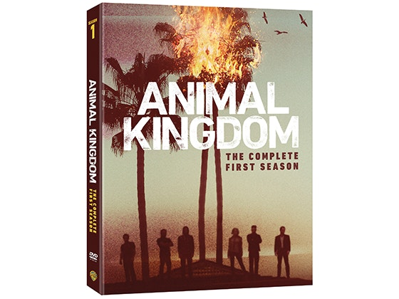 Animal Kingdom: The Complete First Season on DVD sweepstakes