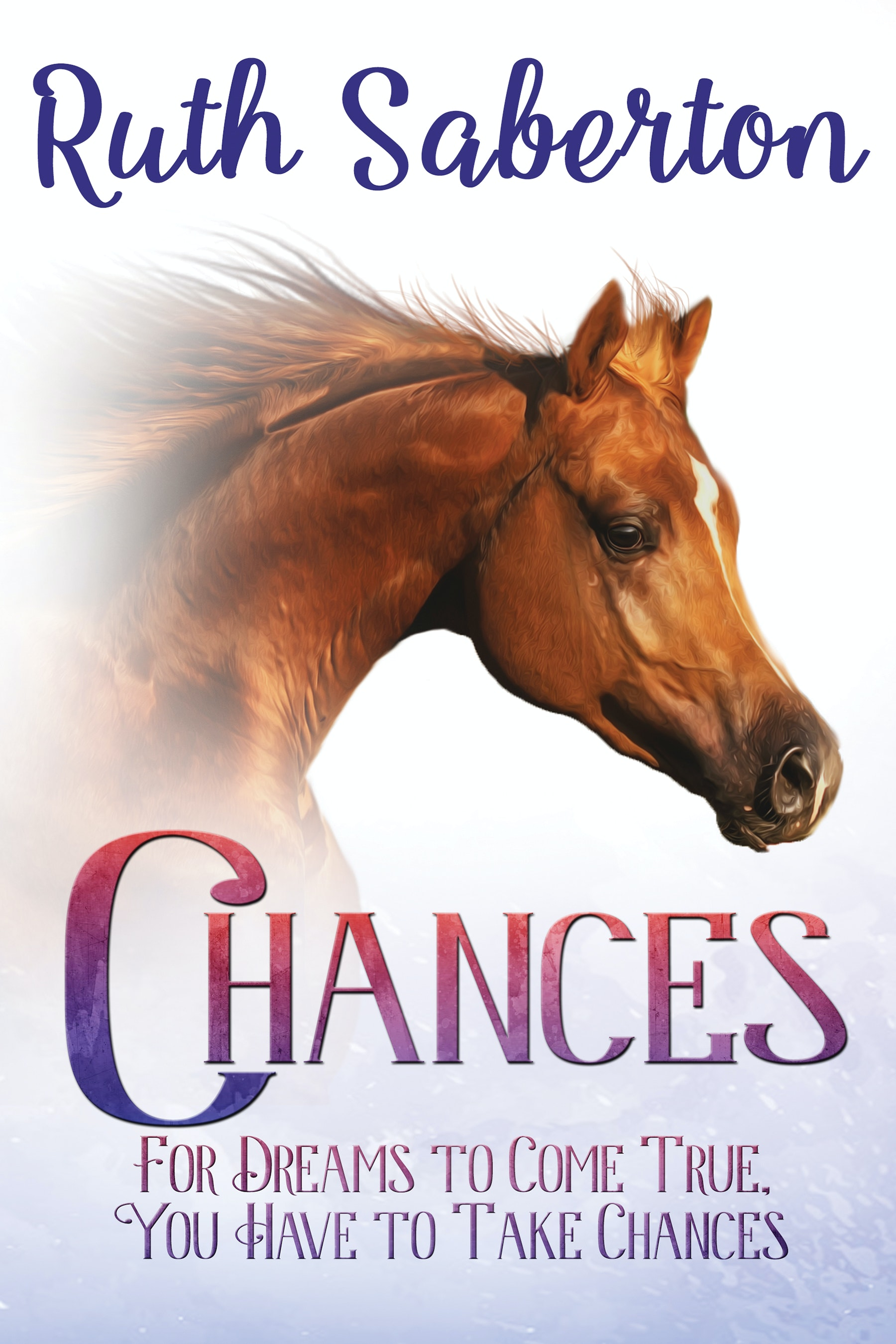 Chances sweepstakes