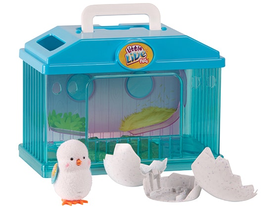 Surprise Chick House from Little Live Pets sweepstakes