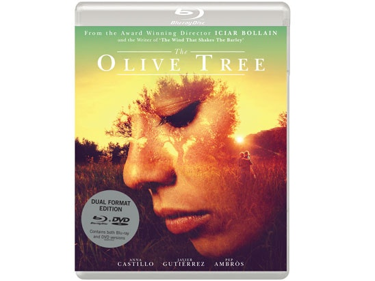 THE OLIVE TREE  sweepstakes