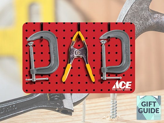 Ace hardware giveaway 1