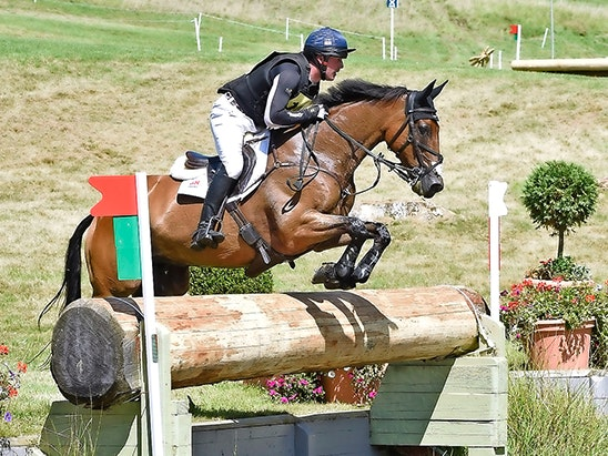 Festival of British Eventing sweepstakes