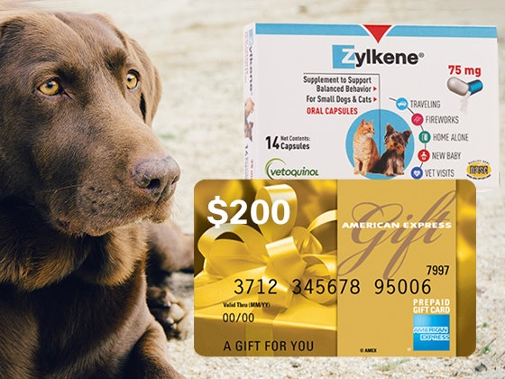 $200 Amex Gift Card from Zylkene sweepstakes