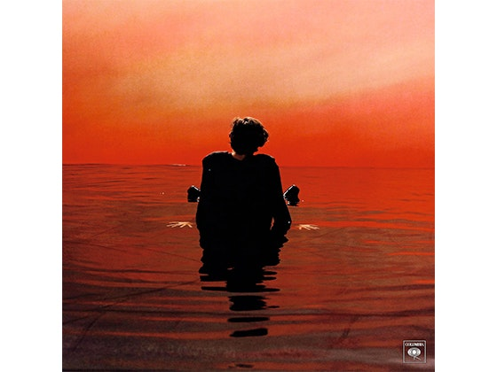 Harry Style's Debut CD sweepstakes