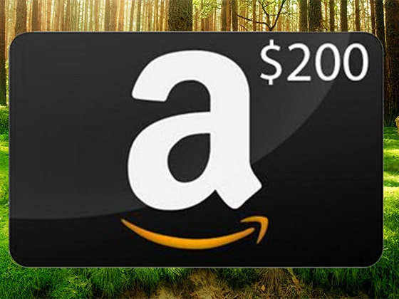 $200 Amazon Gift Card from Sting-Kill and Fire Out sweepstakes