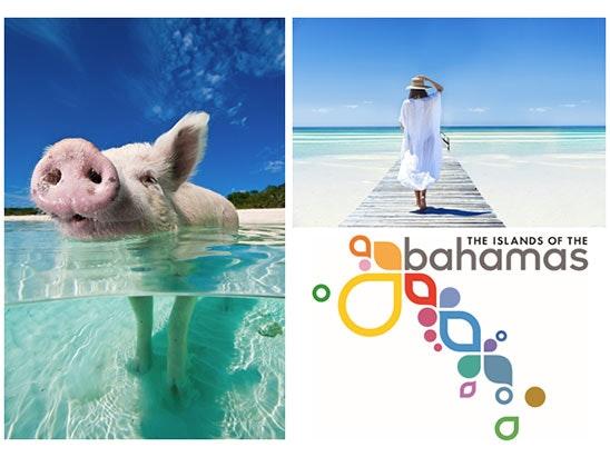 Bahamas Goodie Bag: sweepstakes