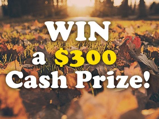 $300 Cash Prize November 2017 sweepstakes