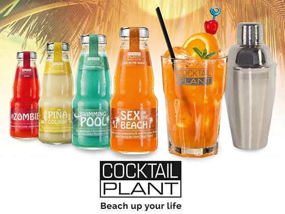 4 Party-Sets von Cocktail Plant! Gewinnspiel