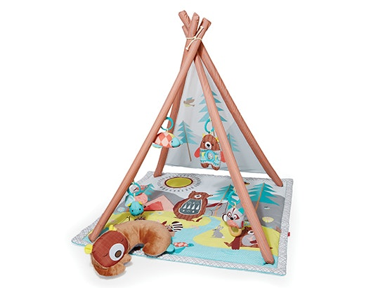 SKIP HOP CAMPING CUBS ACTIVITY GYM sweepstakes