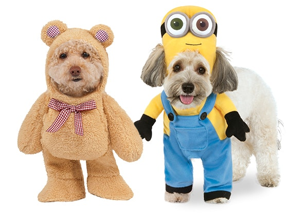 Rubie's Pet Shop Dog Costume sweepstakes