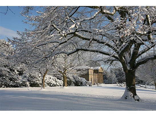 Tatton Park sweepstakes