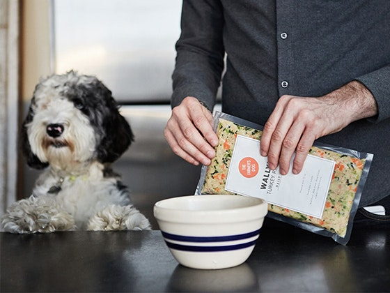 The Farmer's Dog Personalized Dog Food sweepstakes