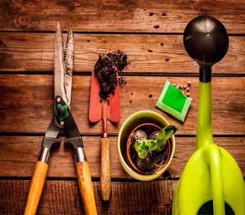 Win a £250 National Garden Gift Voucher sweepstakes