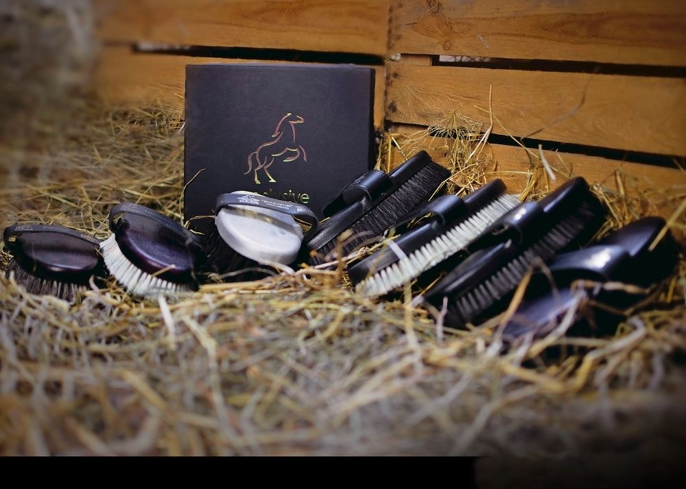 Eqclusive Grooming pack sweepstakes