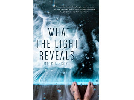 Mick McCoy's  novel What the Light Reveals?   sweepstakes