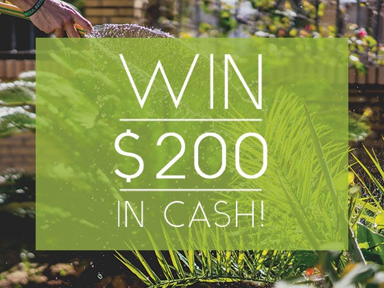 $200 Cash Prize March-April 2018 sweepstakes