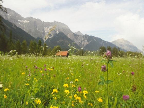 Da will ich hin: Region Innsbruck Gewinnspiel