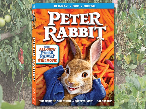 """PETER RABIT"" on DVD sweepstakes"