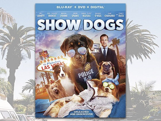 """""""Show Dogs"""" on DVD sweepstakes"""