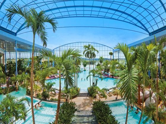 Panoramaansicht palmenparadies