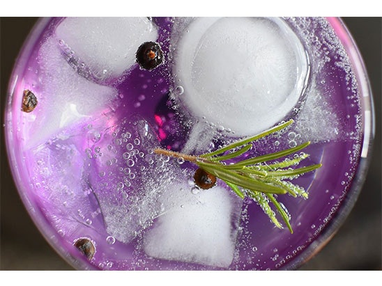 sweet violet gin sweepstakes