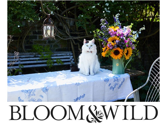 Bloom and wild sweepstakes