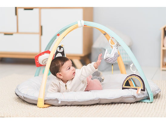 Taf Toys Musical Newborn Nest and Gym sweepstakes