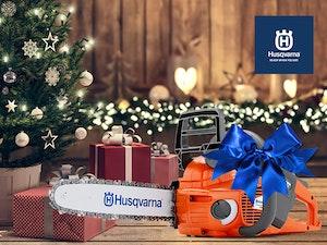 536lixp unterm weihnachtsbaum 560x420