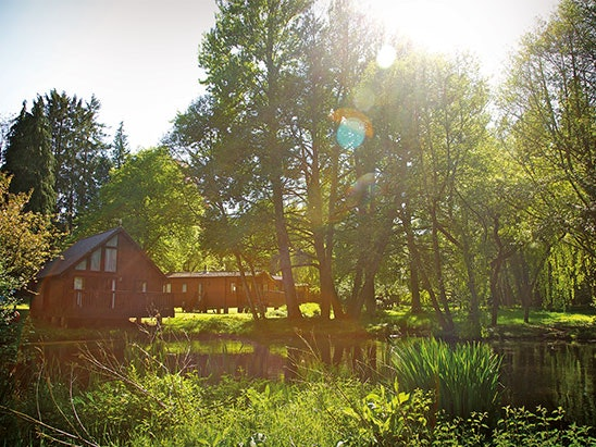 Glamping weekend at Whitemead Forest Park sweepstakes