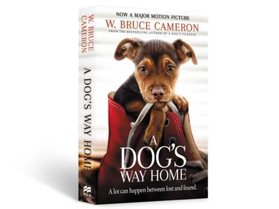 A DOG'S WAY HOME novel  sweepstakes