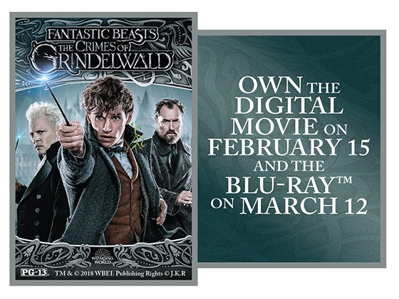 Fantastic Beasts on Digital sweepstakes